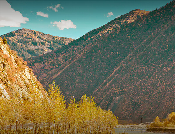 Earnings for All Seasons